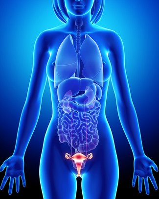 Endometriosis and Medical Glossary, Endometriosis Association